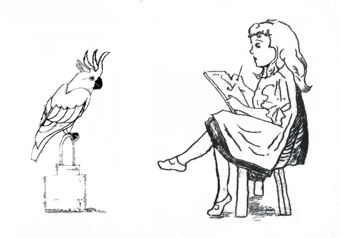 Girl drawing a parrot