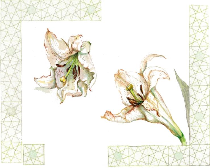 lillies-mit-border1